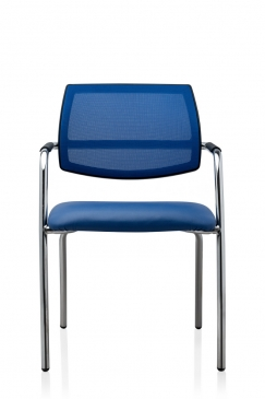 sit.4.mesh